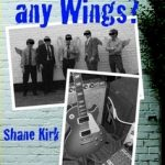 Do You Do Any Wings? – A Skirky writes…
