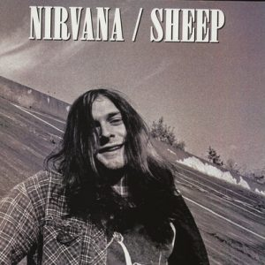 Nirvana – Sheep
